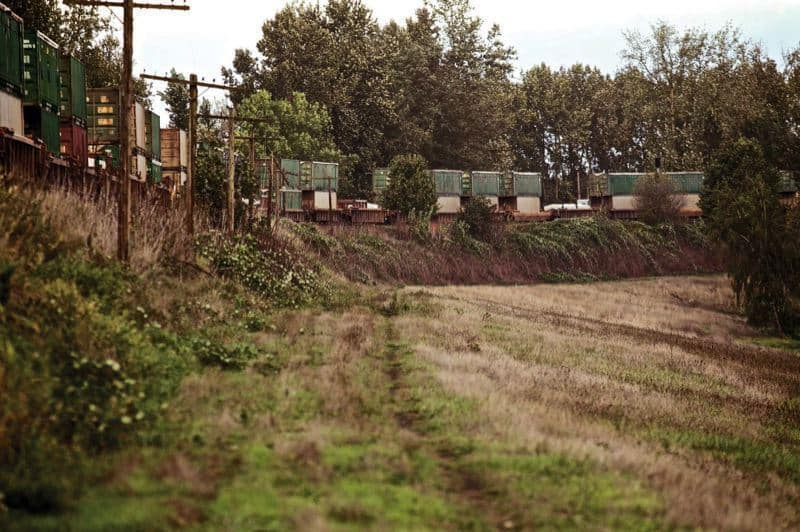 This railroad embankment performs double-duty as a levee to protect Portland from Columbia River floods. It's the same one whose spectacular failure in 1948 resulted in floods that leveled the entire city of Vanport.